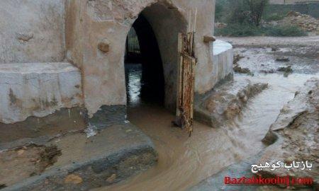 تصاویری از بارش رحمت الهی